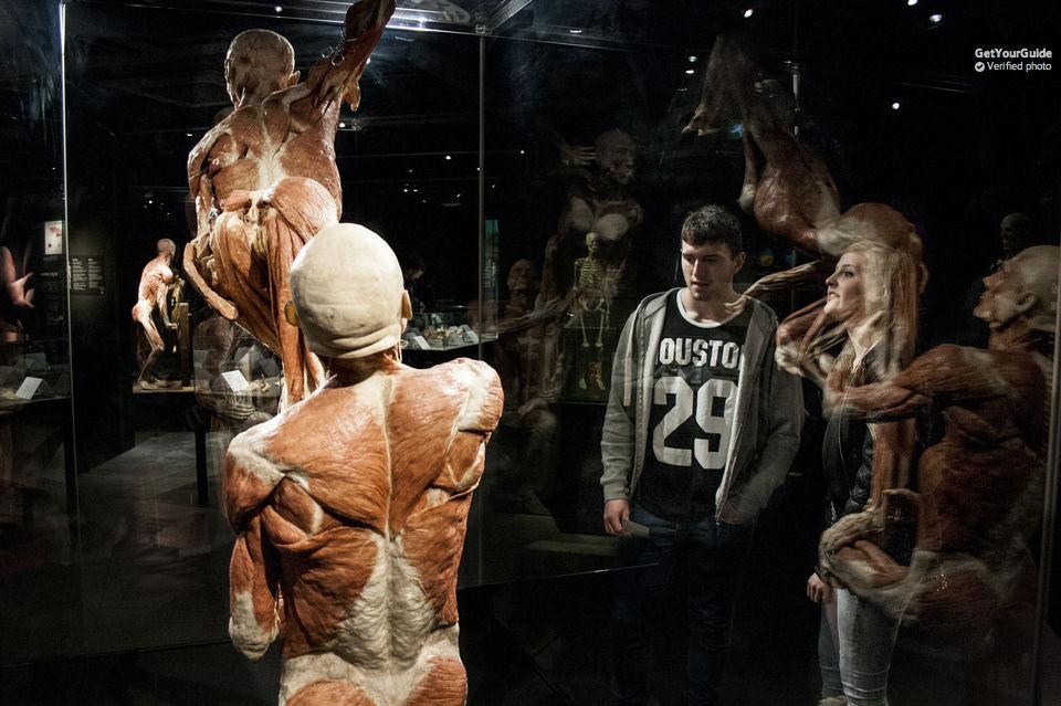 Museo Delle Cere Amsterdam.Body Worlds Visita Il Museo Del Corpo Umano Di Amsterdam