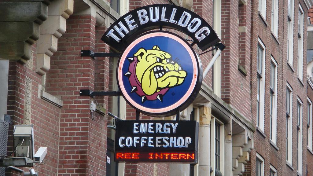 5 Coffee Shop Che Non Dovresti Assolutamente Perdere