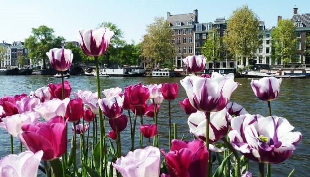 Amsterdam in primavera voli low cost ed eventi da non perdere for Dormire a amsterdam consigli